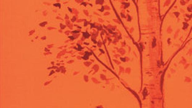 |Resenha| O Outono do Álamo – Kazumi Yumoto |Livro|